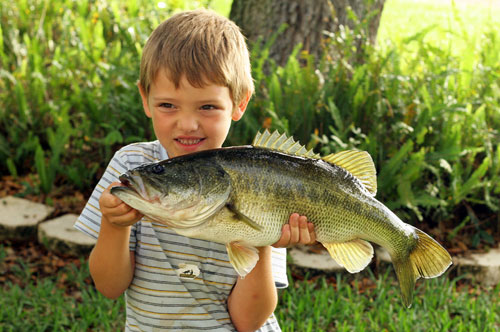 Catch of the day - Kid holding big fish